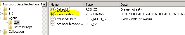 DPM_2010_ConfigurationBinaryValueREG